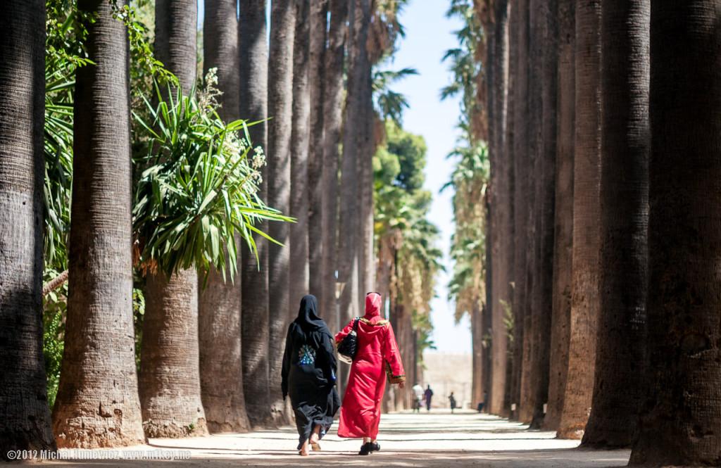 Park Bab Bou Jeloud